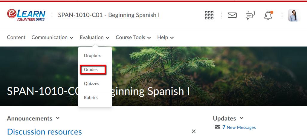 Screenshot of grades link.