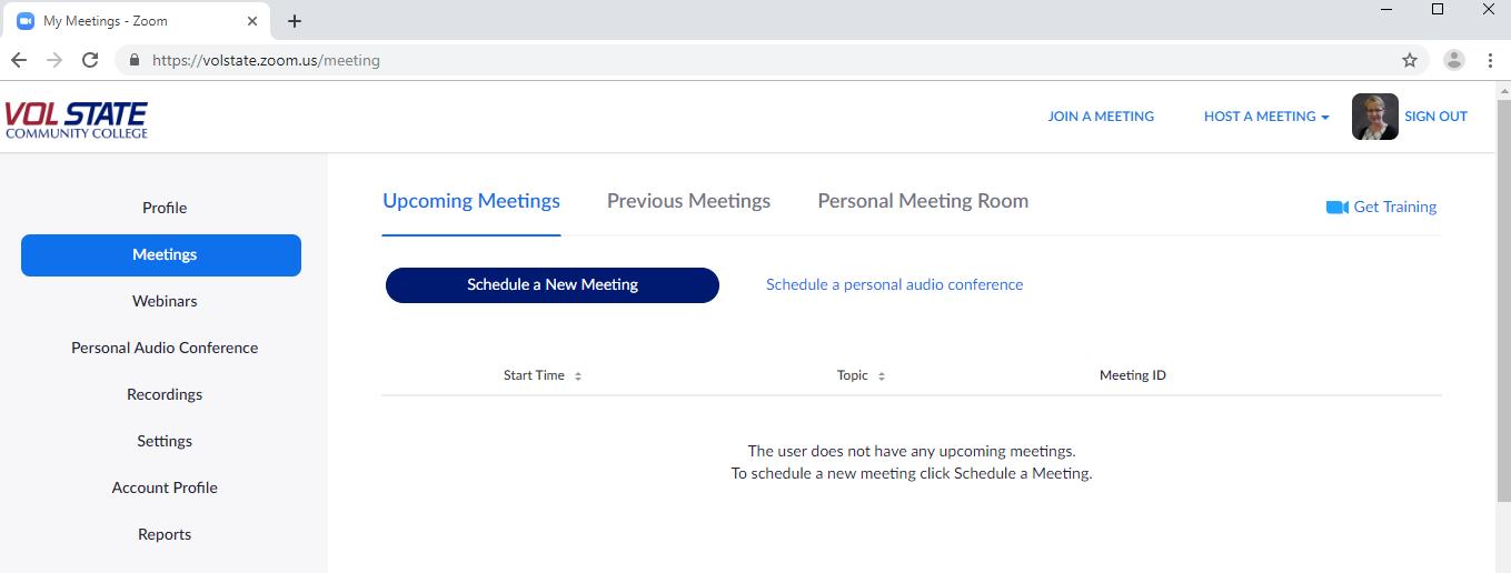 screen shot of the Zoom meeting menu online