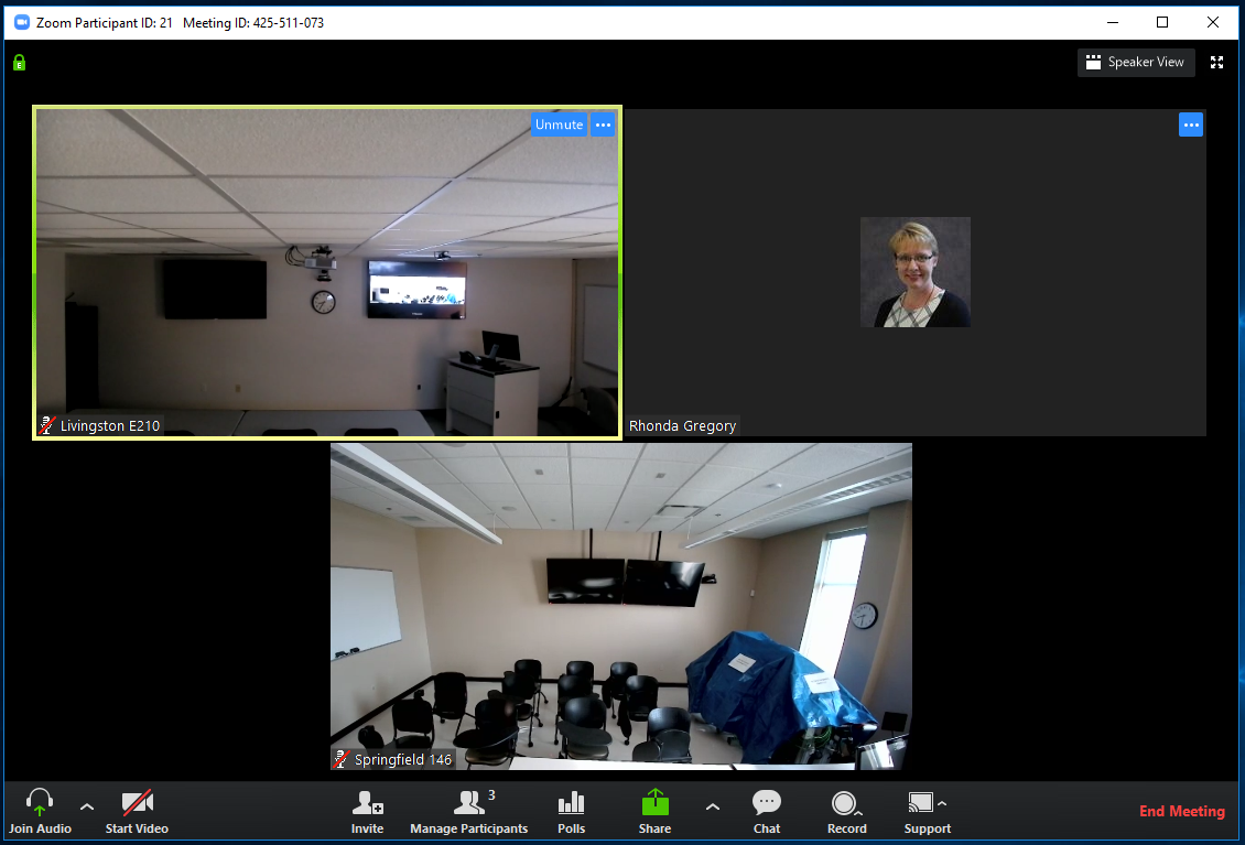screen shot of a live zoom meeting in progress and connected to two Zoom rooms