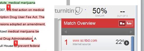 Screenshot of a turnitin report