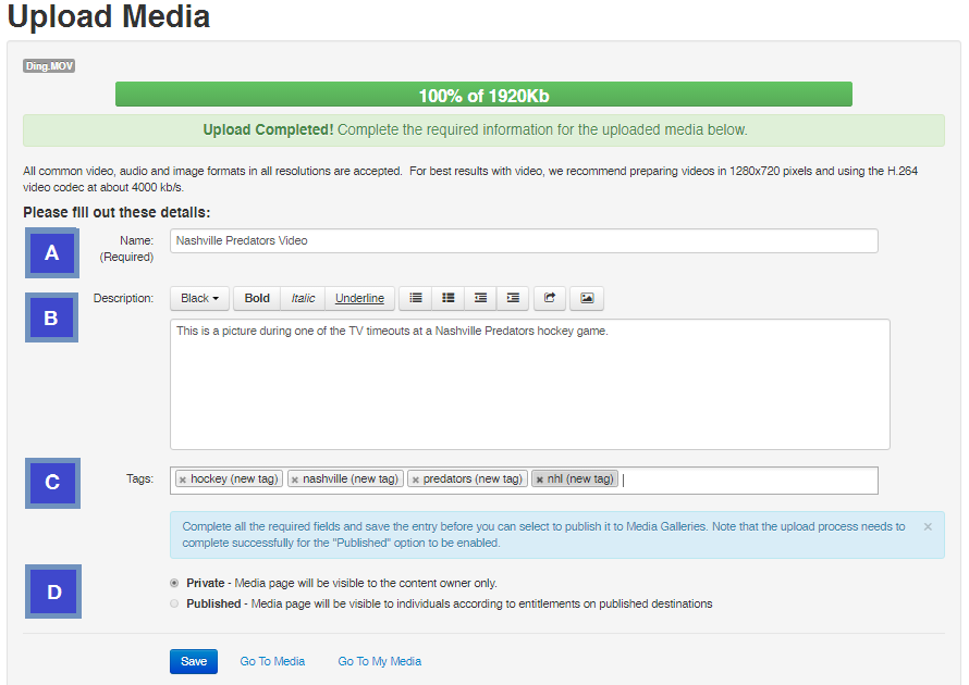 screenshot of sample upload media metadata fields